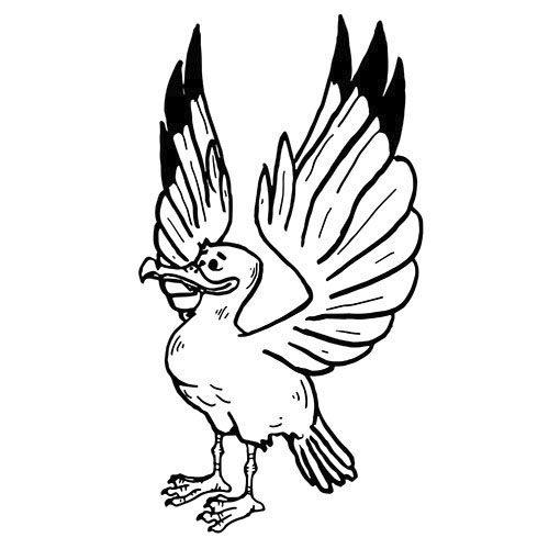 albatros als kostenloses ausmalbild in din a4