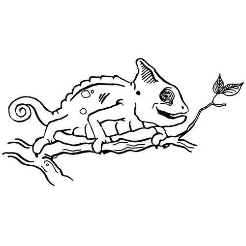 chamäleon als kostenloses ausmalbild in din a4